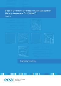 Full size image of Asset Management Maturity Assessment Tool (Guide)